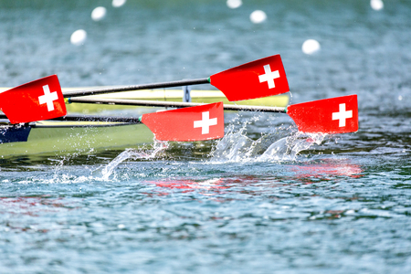Three paddles with swiss coat of arms coming up out of the water.