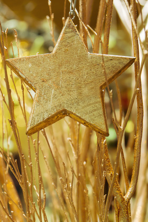 arm bouquet: Bouquet of golden colored branches and  a wood star in the foreground at advent season. Stock Photo