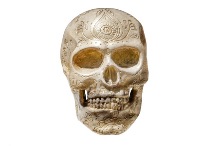 decorated: Isolated skull on white background with carved ornaments