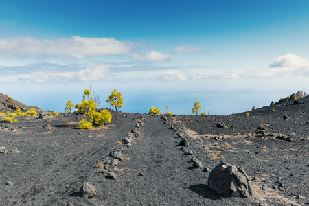 ruta: Shot of the famous trekking path Ruta de los vulcanos , taken in the south of la Palma nearby Los Canarios. The photo shows a volcanic rock trail, which seems to end right in the atlantic ocean.