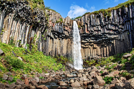 Beautiful Svartifoss waterfall in Iceland