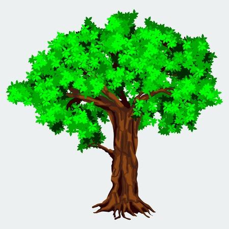 Editable Dense Tree Vector Illustration Illustration