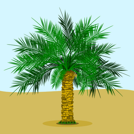 Editable Date Palm Tree with Grass on the Bottom