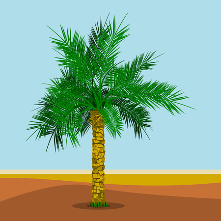 Editable Date Palm Tree Vector Illustration