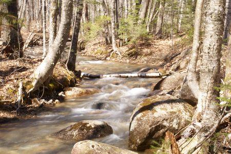 Spring Stream Flow