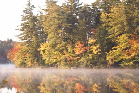 astral: Fall Colors In Morning On Lake
