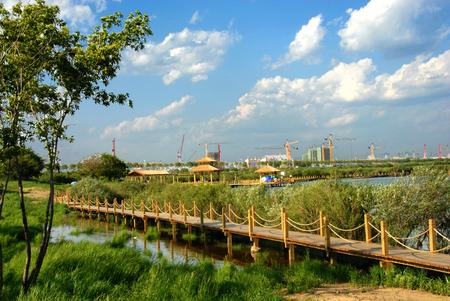 Jin Hewan wetland