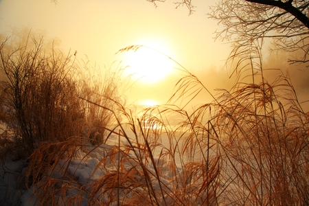 Ku'erbin scenery Stock fotó