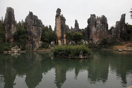 Stone Forest Reklamní fotografie