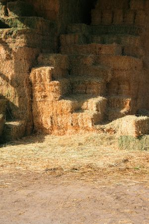 farmed: Hay stack stored in a barn in a cattle farm. Stock Photo