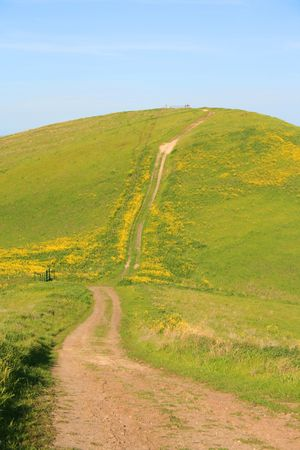 Mountain trail with wildflowers over blue sky. photo