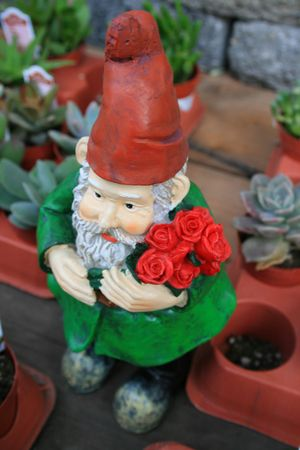 dwarfs: Close up of a small garden gnome.