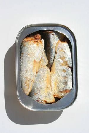 Sardines in a Can photo