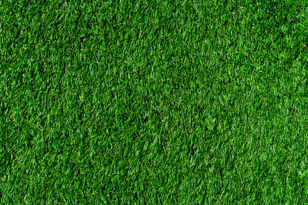 Patch of vibrant green grass on a field Stock Photo