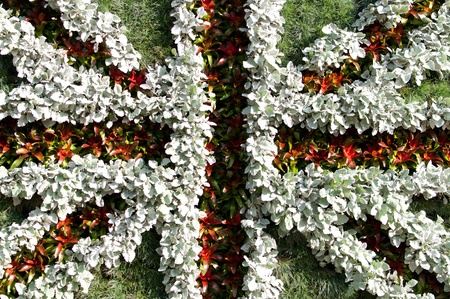 British flag made out of plants photo