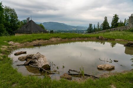 Natural and medieval landscape in a castle ruin walls area, with a small pond Zdjęcie Seryjne