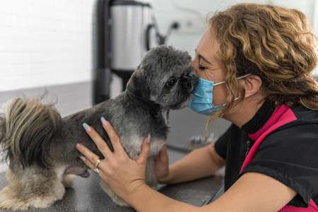Cute image of a female veterinarian hugging an adorable Shih Tzu breed dog