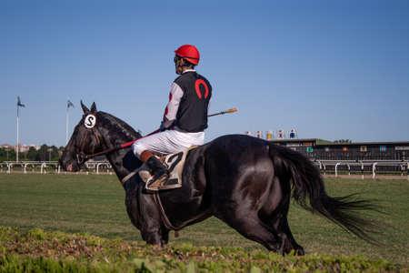 Horse and jockey running through a field at twilight Stock Photo