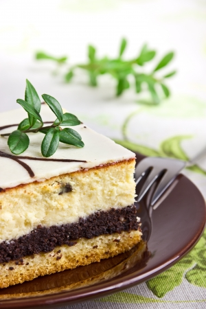 Delicious sweet cheesecake with poppy seed photo