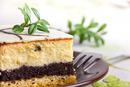 Delicious sweet cheesecake with poppy seed 免版税图像