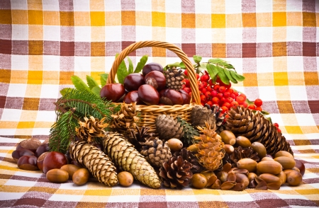 Wicker basket full of autumn acorns, cones and chestnuts