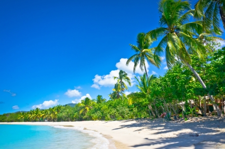 Beautiful beach in Saint Lucia, Caribbean Islands photo