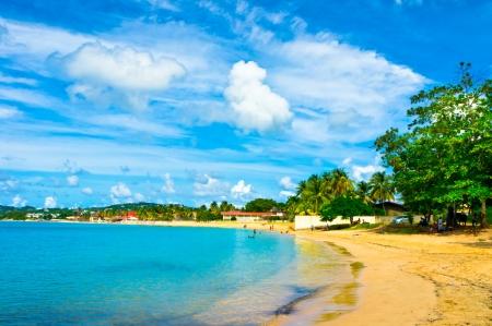 Beautiful beach in Saint Lucia, Caribbean Islands Stock Photo - 17423775