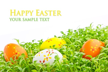 Decorative easter eggs in a grass