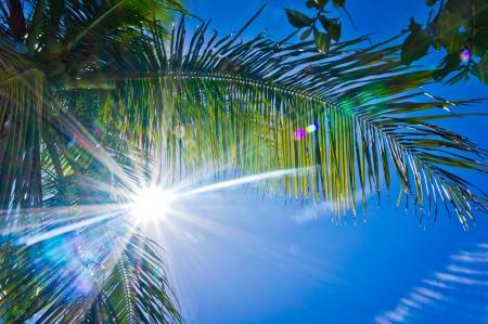 Hermosa vista de Tortola, Islas Vírgenes Británicas