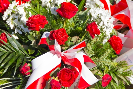 Composition of red and white flowers Stock Photo