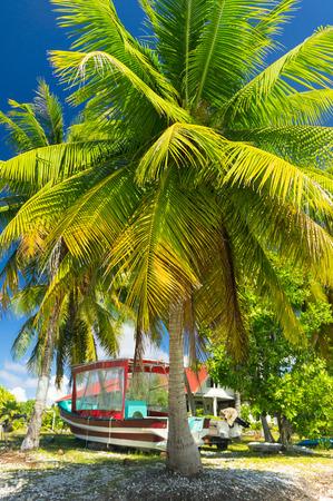 polynesia: Paradise view of Rangiroa atoll, French Polynesia