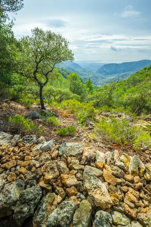 sierras: Beautiful view of Sierra de Tramuntana, Mallorca, Spain