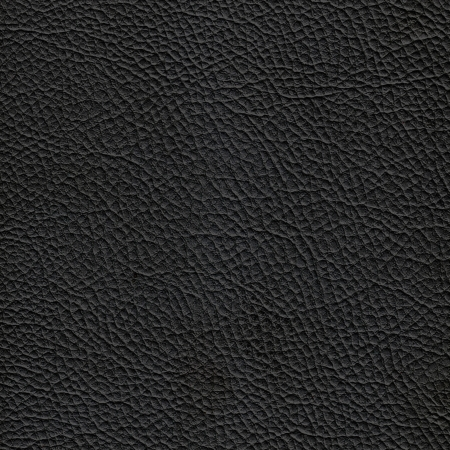 Black leather texture. (high res. scan) Stock Photo - 9193869
