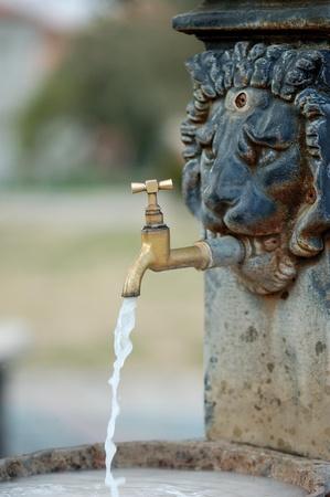 lion head water fountain  photo