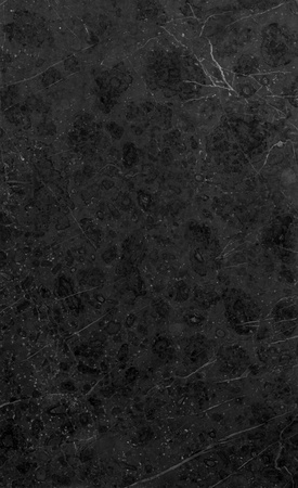 High Res. Black marble texture.