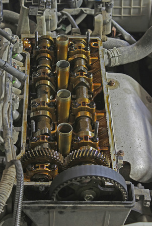 internals: The internals of the engine under the valve cover