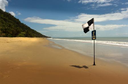 port douglas: beach with palmtree in Queensland