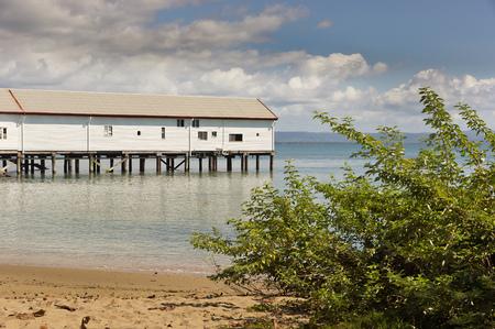 port douglas: Coast at Port Douglas in Australia