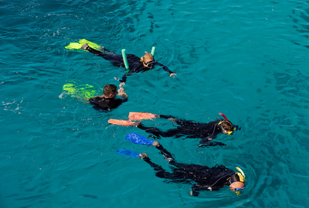 barrier reef: Snorkeling at the Great Barrier Reef