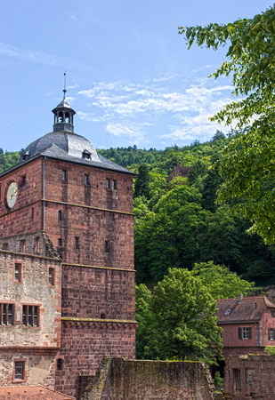 heidelberg: old castle ruin in heidelberg