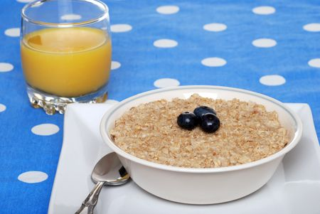oatmeal: oatmeal with blueberries focus on berries
