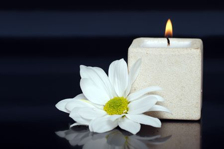 lite:  lite candle with a daisy