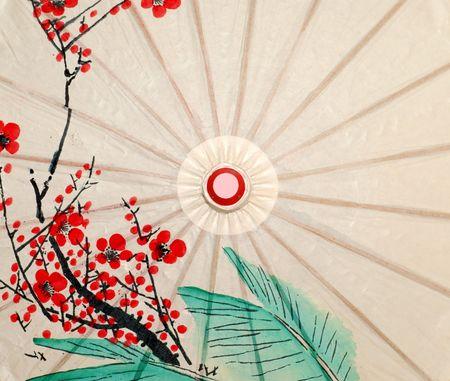 paper umbrella: Oriental umbrella closeup