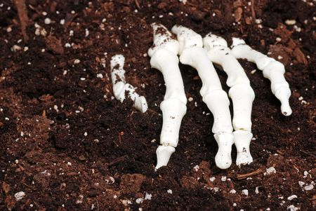 creepy hand: skeleton hand in dirt Stock Photo