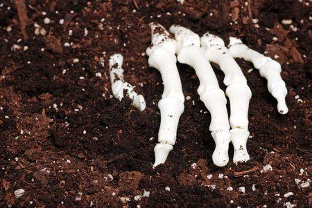 creepy hand: skeleton hand in dirt Stock Photo