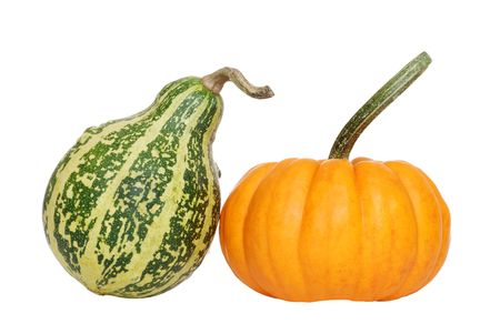 green and orange gourd photo