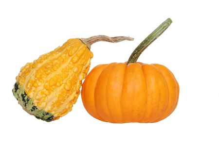 two gourds photo
