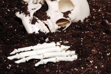clawing: bones in dirt focus hand Stock Photo