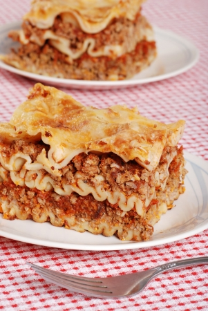 lasagna with a fork photo