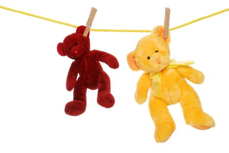 two teddy bears on clothes line photo